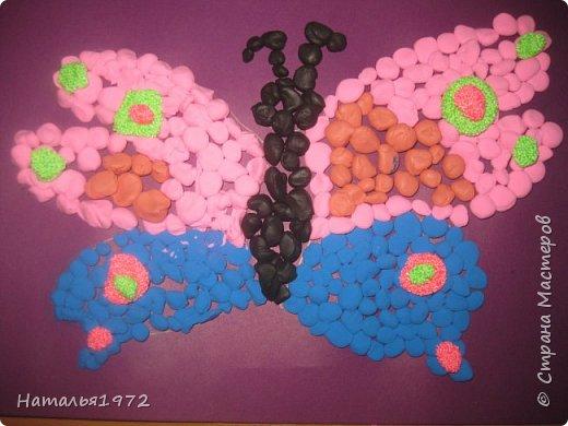 Бабочки пластилиновые фото 2