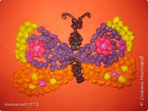 Бабочки пластилиновые фото 4