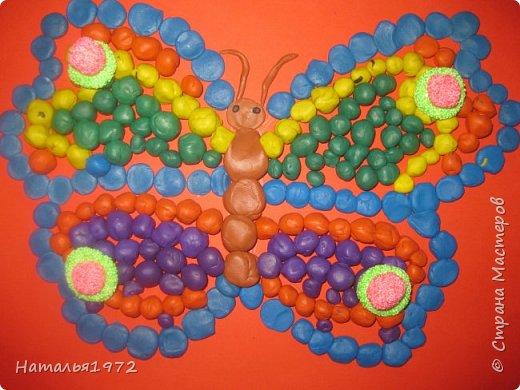 Бабочки пластилиновые фото 1