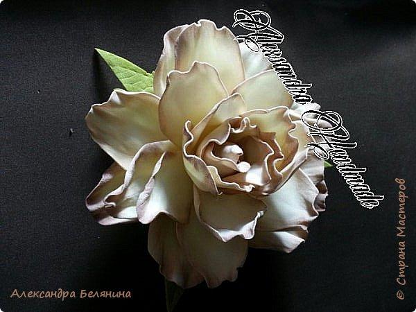 Фантазийный цветочек нежно лимонного цвета с бежевой коемочкой. фото 1
