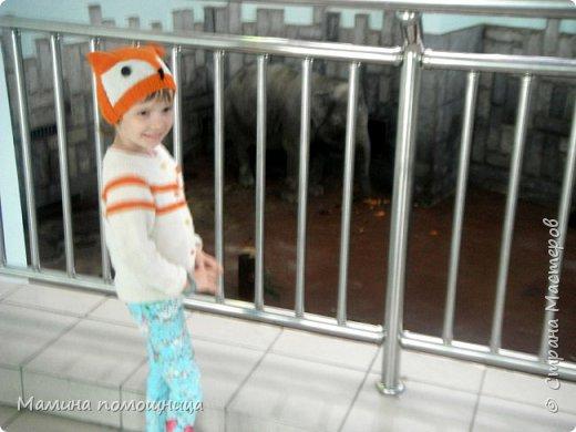 Здравствуйте! Наше новое приключение прошло в Екатеринбургском зоопарке. Зачем нужны зоопарки? Помимо того, что в зоопарках можно увидеть редких животных, там большое значение придают исследованию их поведения. Размножению животных в неволе уделяется большое внимание. Численность некоторых видов животных в природных популяциях настолько мала, что размножение в условиях зоопарков может быть единственным способом уберечь их от вымирания. В том случае, если удается получить многочисленное потомство, часть его выпускают в те места, где этот вид уже исчез.  фото 20