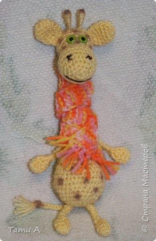 Жирафик и его друг фото 2