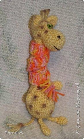 Жирафик и его друг фото 4