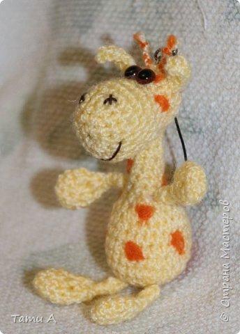 Жирафик и его друг фото 5