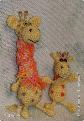Жирафик и его друг фото 1