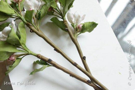 Девочки,заказали мне еще три веточки яблони и я решила отснять как я делаю листики и собираю веточки,хотя бы вкратце) Может новичкам пригодится мой опыт. фото 26