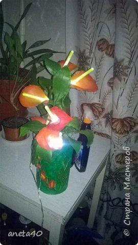 Светящиеся каллы фото 2