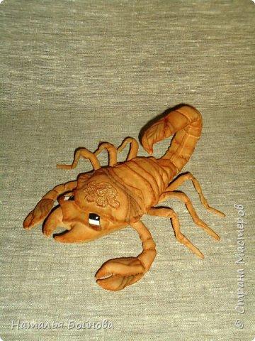 Давно хотела сшить такого скорпиона в технике грунтованный текстиль по м.к. Анастасии Голеневой)) фото 6