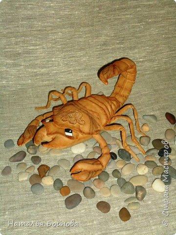 Давно хотела сшить такого скорпиона в технике грунтованный текстиль по м.к. Анастасии Голеневой)) фото 3