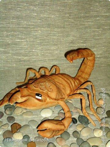 Давно хотела сшить такого скорпиона в технике грунтованный текстиль по м.к. Анастасии Голеневой)) фото 4