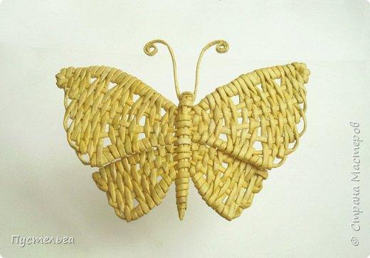 Скоро лето! Сплетём бабочку! фото 26