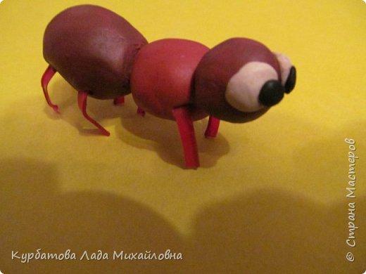 """Вот такой получился """"Красный муравей"""". фото 1"""