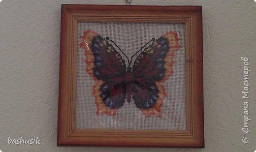 Пчелка Майя фото 2