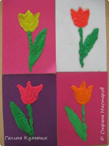 Первоцветы фото 3