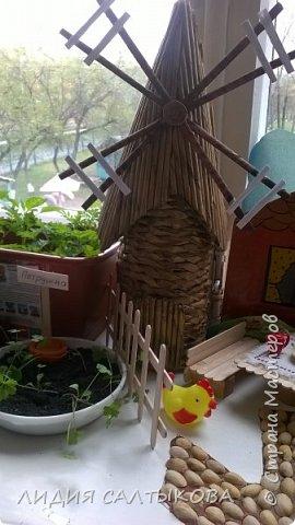 """этой весной на окошке нашей группы """"Фантазеры"""" в детском саду красовался вот такой огород. фото 6"""