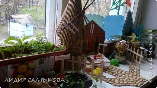 """этой весной на окошке нашей группы """"Фантазеры"""" в детском саду красовался вот такой огород. фото 5"""