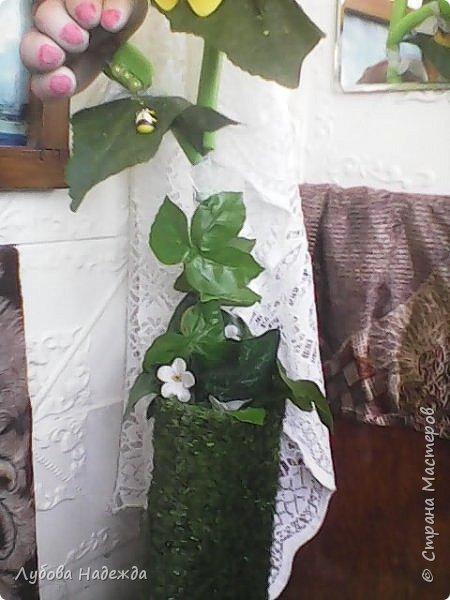 Подсолнуховая парочка фото 5