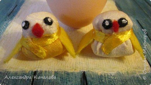 Цыплята. фото 3