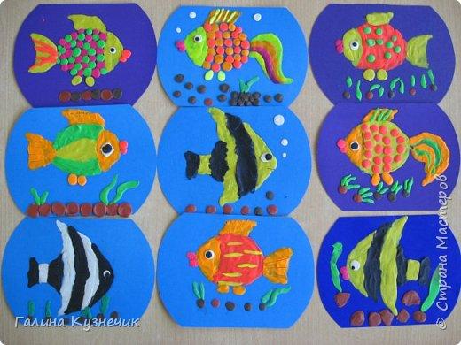 Рыбка в аквариуме. фото 2