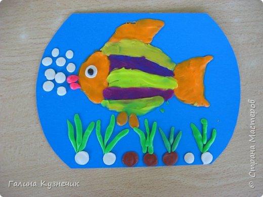 Рыбка в аквариуме. фото 1