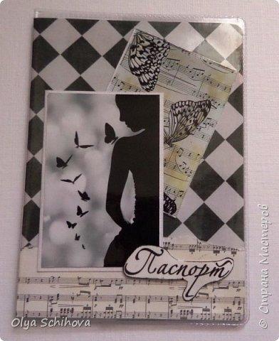 Обложки на паспорт фото 4