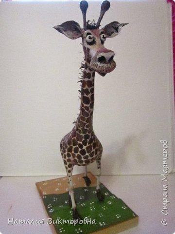 Жираф 2! фото 3