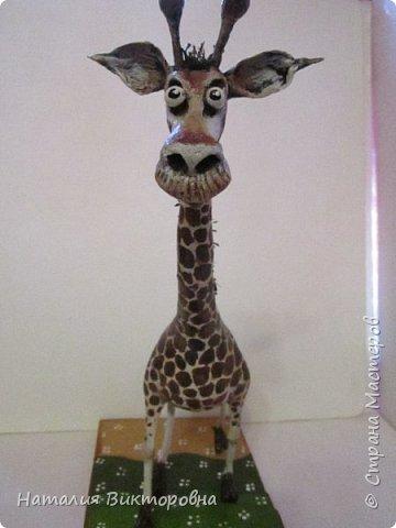 Жираф 2! фото 5