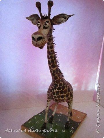 Жираф 2! фото 1