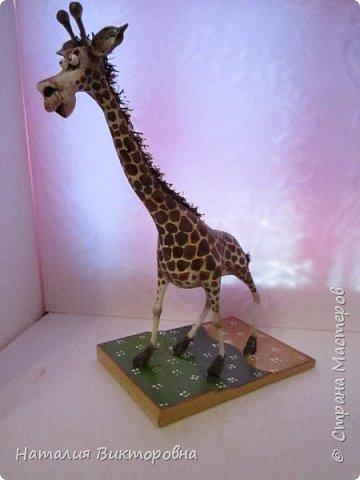 Жираф 2! фото 2