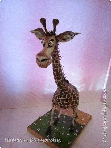 Жираф 2! фото 7