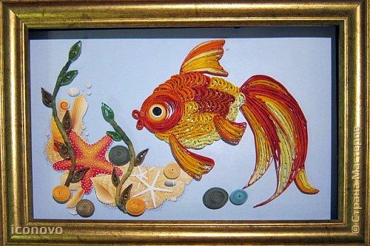Выполнить данную работу меня,увы, подтолкнуло несчастье. Тяжело заболела моя подруга, она рыбка по знаку зодиака. Я решила попробовать немножко поднять ей настроение и к её дню рождения сделать Золотую рыбку для исполнения желаний. Рыбка Saphir меня к этому подтолкнула. http://stranamasterov.ru/node/500948 - это ссылка на её замечательную работу. фото 1
