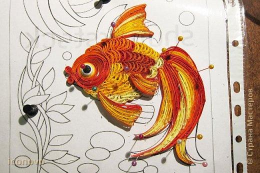 Выполнить данную работу меня,увы, подтолкнуло несчастье. Тяжело заболела моя подруга, она рыбка по знаку зодиака. Я решила попробовать немножко поднять ей настроение и к её дню рождения сделать Золотую рыбку для исполнения желаний. Рыбка Saphir меня к этому подтолкнула. http://stranamasterov.ru/node/500948 - это ссылка на её замечательную работу. фото 9