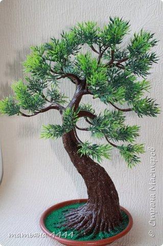 Дерево сделано из искусственны веточек фото 1