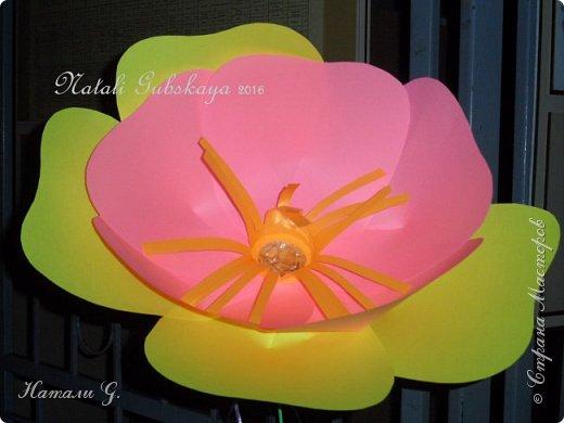 Вот такие  у меня  получились  цветы  для  украшения  фойе   на  выпускной. фото 3
