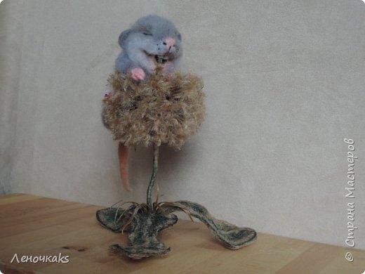Мышонок на цветке фото 3