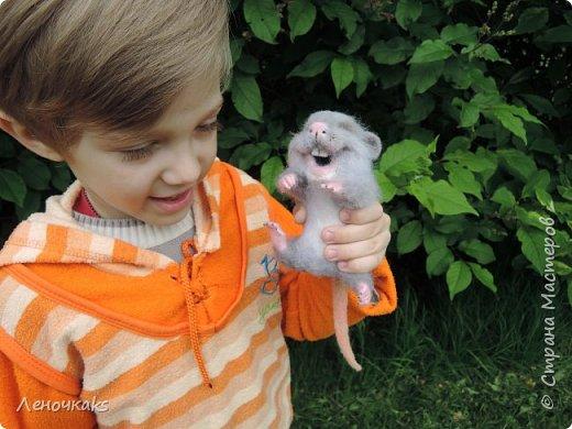 Мышонок на цветке фото 6