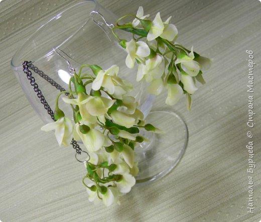 У нас сейчас самое время цветения АКАЦИИ. Приятный аромат разносится по всюду и навевает вдохновение)! Посмотрев видео, вы научитесь лепить замечательные цветы акации и собирать их в украшения. фото 6