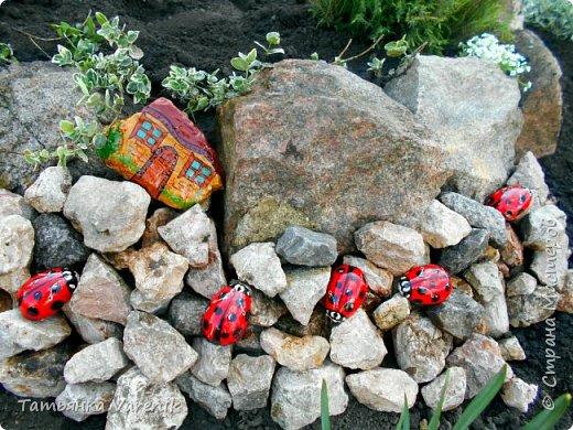 Даже камни можно сделать живее, красочней и прикольней, если с ними совсем немного поработать! Божьи коровки  это отливки из гипса.В качестве формы использовала пластиковые контейнеры от КиндерДжой. фото 4