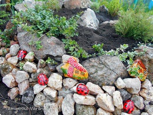Даже камни можно сделать живее, красочней и прикольней, если с ними совсем немного поработать! Божьи коровки  это отливки из гипса.В качестве формы использовала пластиковые контейнеры от КиндерДжой. фото 5