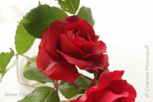 Девочки,привет! После мк кустовой розочки,стояла моя беляночка одинокая) А тут у меня в саду распустились кустовые розы красного цвета.Я как их увидела не смогла пройти равнодушно,сорвала одну и повторила в тройном экземпляре.Так родились сестрички для моей беляночки) Ну и орешки в тему пригодились.Вот такая сказка получилась в цветочной композиции) фото 6