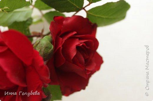 Девочки,привет! После мк кустовой розочки,стояла моя беляночка одинокая) А тут у меня в саду распустились кустовые розы красного цвета.Я как их увидела не смогла пройти равнодушно,сорвала одну и повторила в тройном экземпляре.Так родились сестрички для моей беляночки) Ну и орешки в тему пригодились.Вот такая сказка получилась в цветочной композиции) фото 5