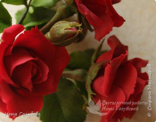 Девочки,привет! После мк кустовой розочки,стояла моя беляночка одинокая) А тут у меня в саду распустились кустовые розы красного цвета.Я как их увидела не смогла пройти равнодушно,сорвала одну и повторила в тройном экземпляре.Так родились сестрички для моей беляночки) Ну и орешки в тему пригодились.Вот такая сказка получилась в цветочной композиции) фото 12