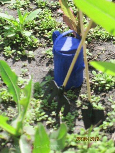 К лету пора готовиться. Мы начали почему-то с садового инвентаря. Наверное потому, что его легко делать) фото 1