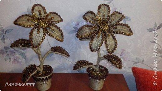 Цветы из кофе