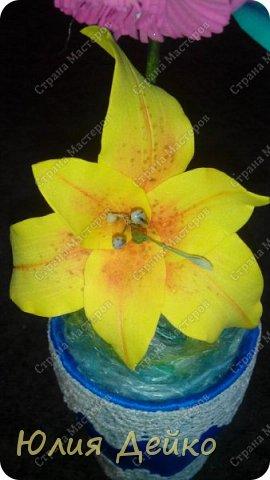 Доброе время суток всем мастерам и мастерицам!!!Хочу с Вами поделиться своей работай.Надеюсь Вам понравится мой топиарчик.))) Все цветочки сделаны из фома,а горшочек --это кружка обклеена атласной лентой и кружевами. фото 3