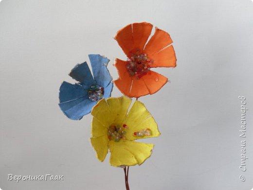 Радужные цветы фото 1