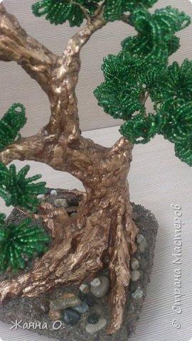Деревья из бисера - очередное моё увлечение.  Представленный на фото бонсай выполнен в стиле Мойо-ги (неформальный вертикальный стиль), при котором ствол дерева имеет ряд изгибов. Данный стиль подходит практически для всех видов деревьев.  фото 3