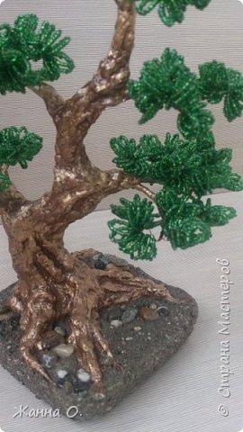 Деревья из бисера - очередное моё увлечение.  Представленный на фото бонсай выполнен в стиле Мойо-ги (неформальный вертикальный стиль), при котором ствол дерева имеет ряд изгибов. Данный стиль подходит практически для всех видов деревьев.  фото 4