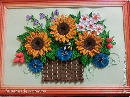Цветы солнца фото 1