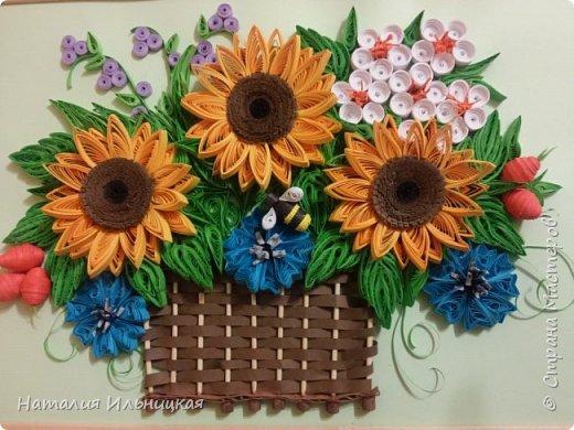Цветы солнца фото 2